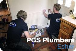 Plumbers in Esher
